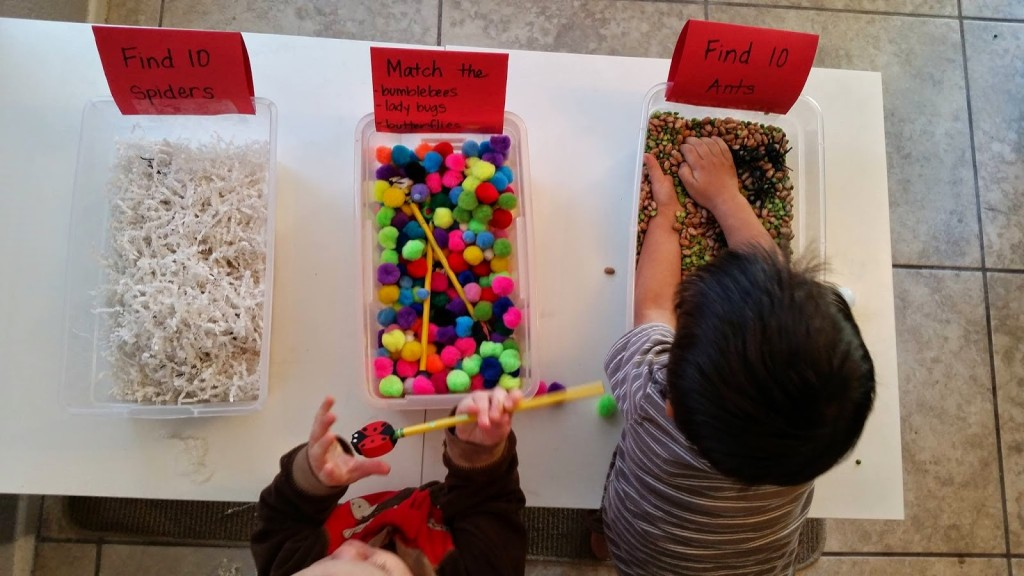 Insect and Spider Sensory Bins!