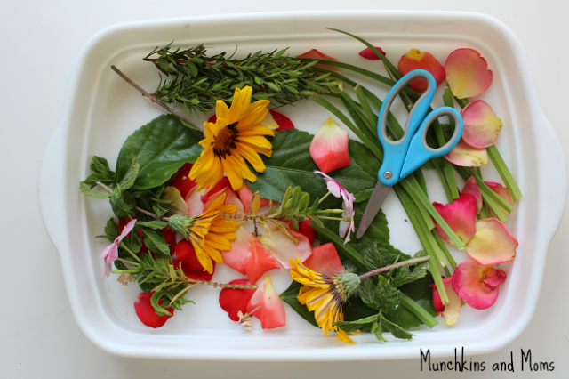 Cutting tray with flowers, leaves, and petals!