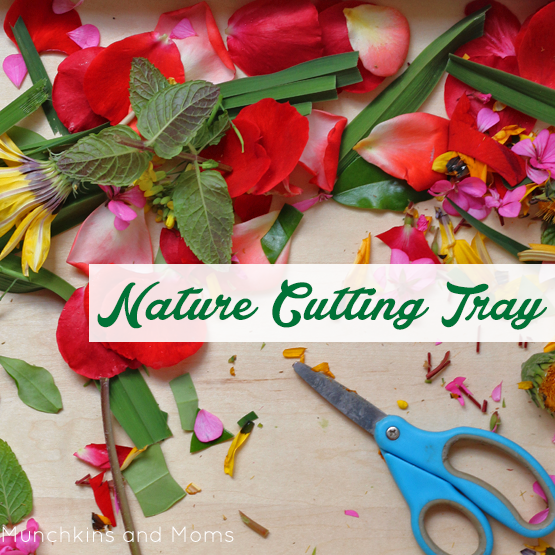 Nature cutting tray for preschool scissor skills