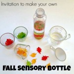 Invitation to Make a Fall Sensory Bottle