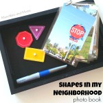 Shapes in our Neighborhood Book