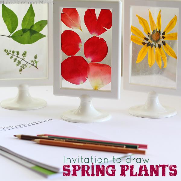 Invitation to draw spring plants