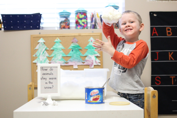 How do arctic animals stay warm in the snow and freezing water? This experiment will help preschoolers find out!